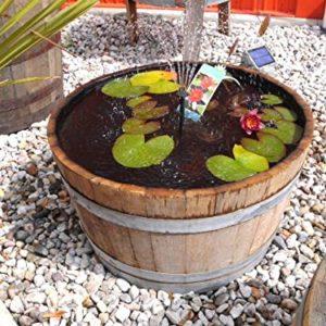 Berühmt Einen Miniteich anlegen und bepflanzen @ZA_08