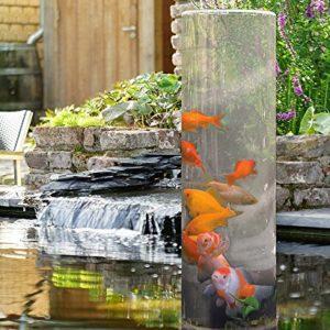 Ein Freilandaquarium Bauen Das Aquarium Auch Im Garten Geniessen