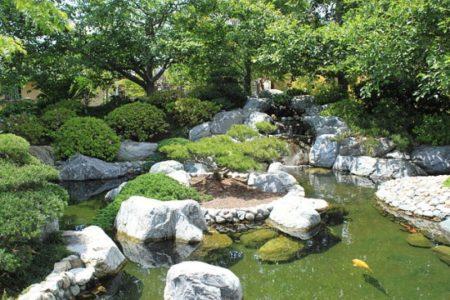 Koiteich im Japanischen Stil