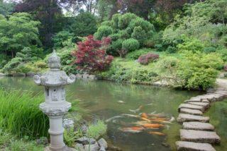Wassergarten im chinesischen Stil