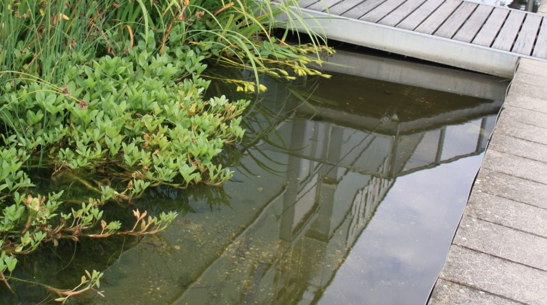 Brücken und Steege am Gartenteich