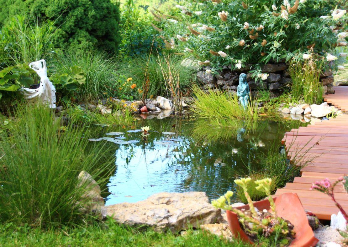 Gartenteich ohne Filter