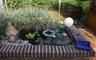 Miniteich mit Wasserpflanzen