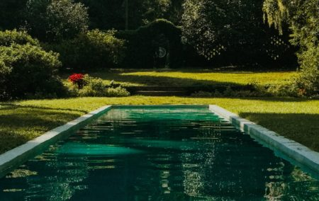 Der Naturpool - Das ist ein naturnaher Pool