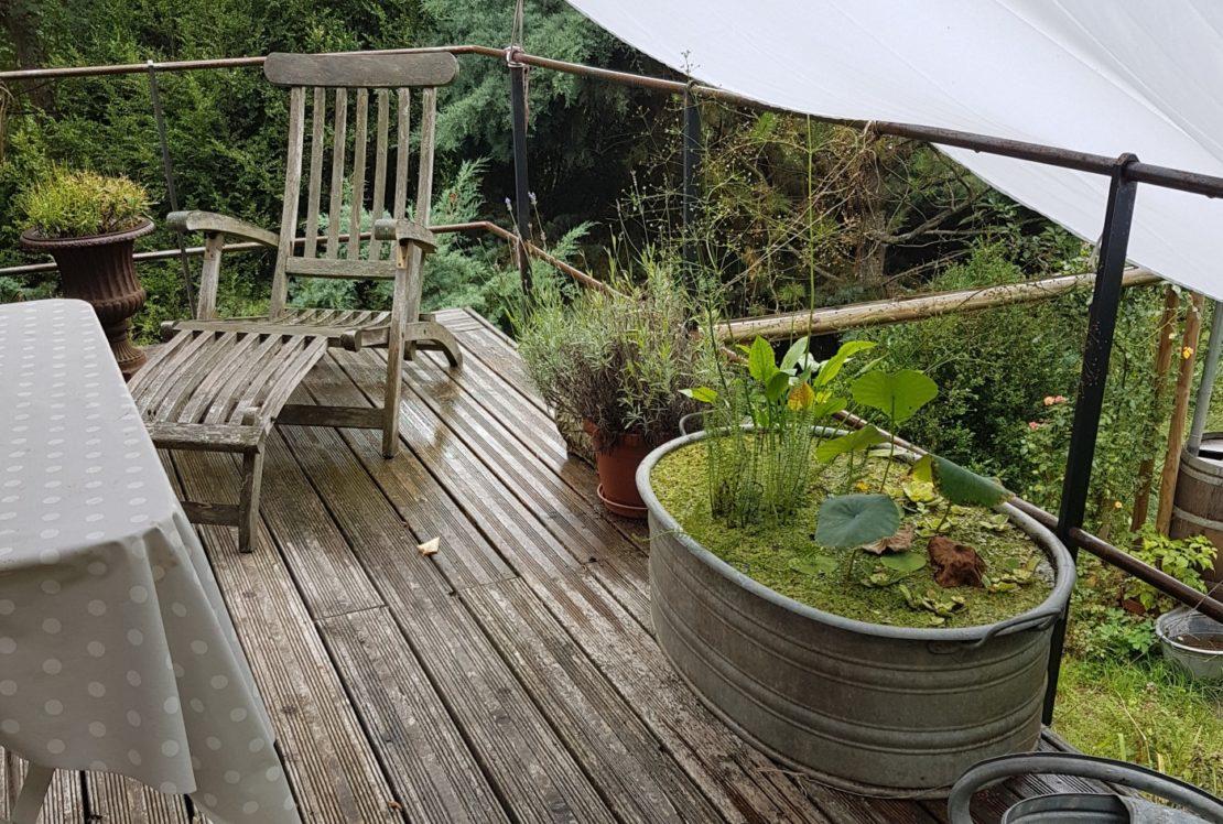Miniteich auf dem Balkon