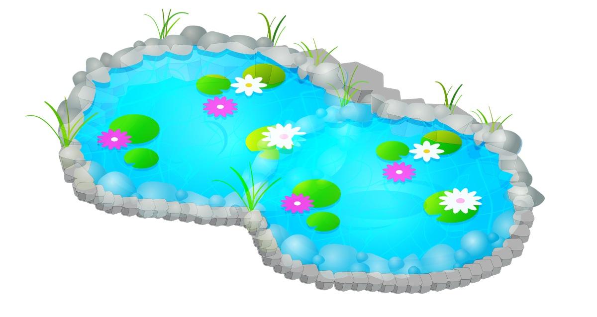 Beim Seerosen pflanzen den passenden Standort wählen.