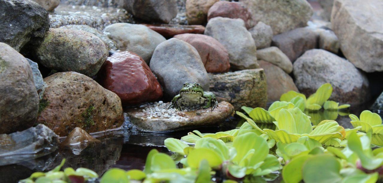 Steinaufschüttungen als Uferbefestigung