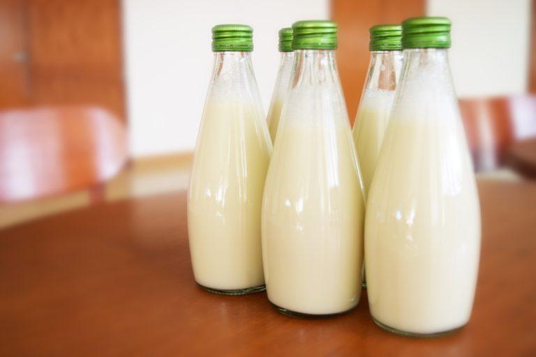 Milch gegen Algen