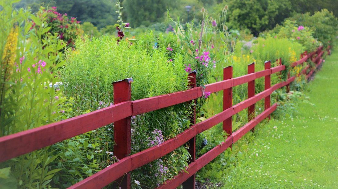 Sichtschutz und Gartenzaun