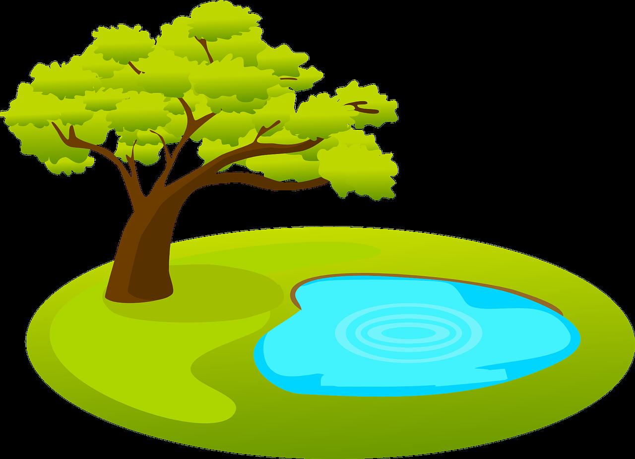 Teich im Schatten eines Laubbaumes